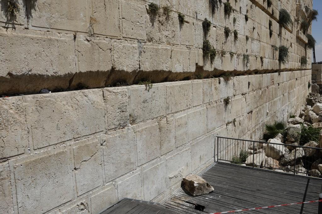 muro igualitario