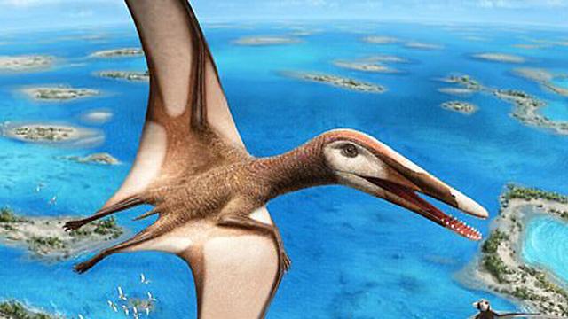petrosauro