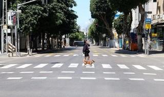 Paseo al perro en Tel Aviv