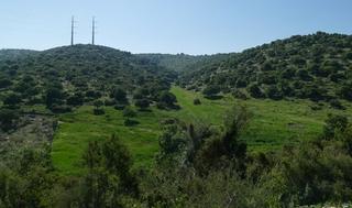 La zona en la que estará situada la reserva natural Guivat Alonim