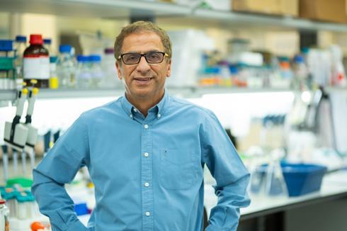 David Zigdon, director general del el Instituto de Investigación Migal Galilee y titular interino de MigVax.