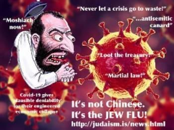 """""""No son los chinos; ésta es una plaga judía."""""""