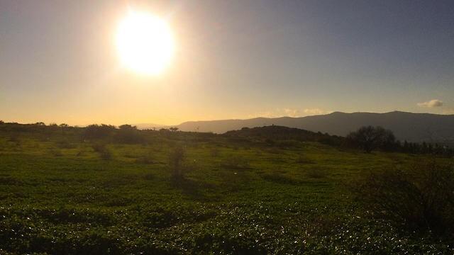 Altos del Golán.
