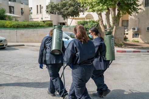 Personal de seguridad y salud arrojan desinfectante.