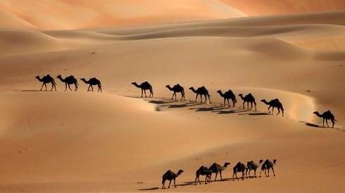 El desierto en los Emiratos Árabes Unidos.