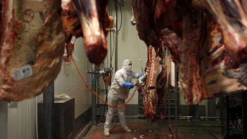 Polonia es el principal exportador de carne kosher de Europa.