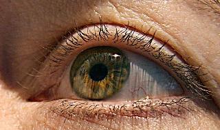 Un nuevo desarrollo de la Universidad de Tel Aviv permite ver colores impercetibles para el ojo humano.