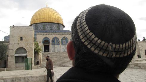"""""""Los rabinos que ascienden al Monte del Templo tienen posiciones halájicas sólidas, incluso si son una minoría frente a una mayoría""""."""