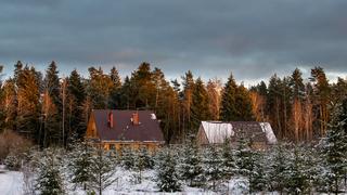 Casas de granjas en los bordes del bosque.