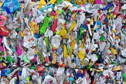 Cada israelí produce un promedio de 1,7 kg. de desechos al día.