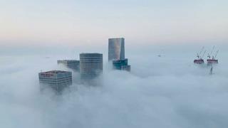 Niebla Tel Aviv