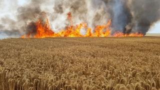 Fuego en el sur tras el lanzamiento de globos explosivos desde Gaza.