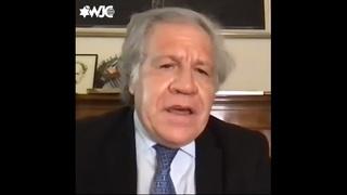 Luis Almagro habla vía zoom en la Asamblea Plenaria del Congreso Judío Mundial.