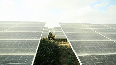 Parcela dual de energía solar y producción agrícola.
