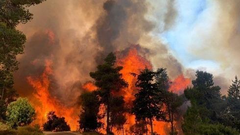 Decenas de dotaciones de bomberos y diez aviones hidrantes intentan contener las llamas.