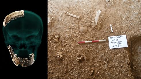 Parte del cráneo y la mandíbula hallados, y el sitio de la excavación donde fueron encontrados los restos fósiles.