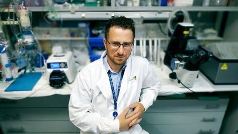 El estudio buscando acabar con la escasez de órganos a nivel mundial.