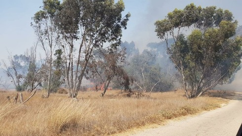 Campos y bosques se queman cerca de la frontera con Gaza debido a los globos incendiarios lanzados desde Gaza.