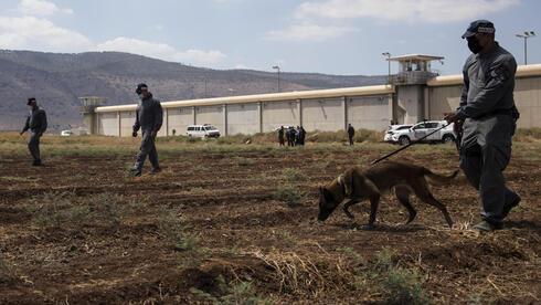 La policía inicia una persecución frente a la prisión de Gilboa.