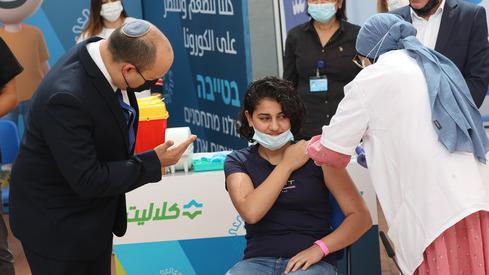 Vacuna Árabe Bennett